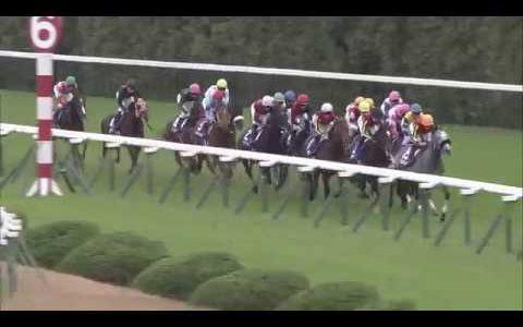 左回り右回りの得意不得意って競馬を予想する上で結構重要な要素なのか?
