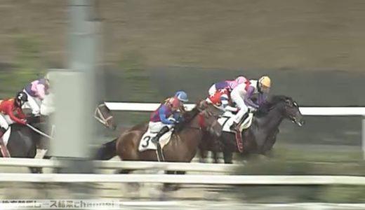 グレイトパール、9馬身差をつけ圧勝【雷山賞】