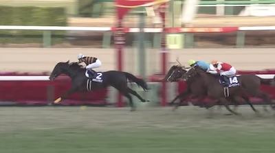 【17年有馬記念1、2着】クイーンズリング×キタサンブラックの仔、産まれる