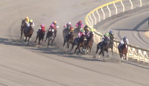 藤田菜七子騎手騎乗のコパノキッキングは4着「前半は脚を温存して、しまいにかける競馬をしようと思っていました」