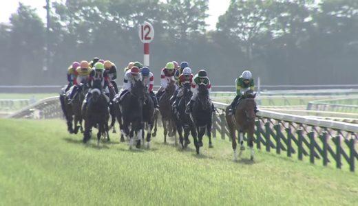 12着シゲルピンクダイヤ和田騎手「4角手前から手応えがなくなった。根本的に距離が長いかも」