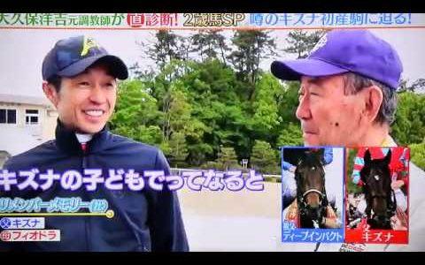 """キズナ初年度最高傑作""""リメンバーメモリー""""、日曜阪神5Rで早くもデビュー"""