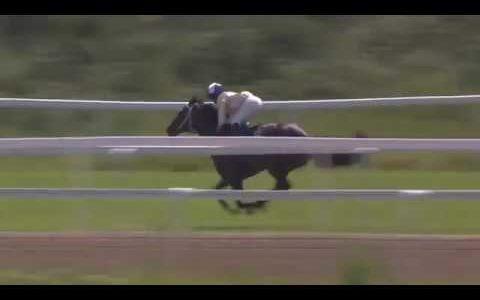 藤田菜七子騎手、女性騎手選抜としてシャーガーカップ(8月10日、英国・アスコット競馬場)へ