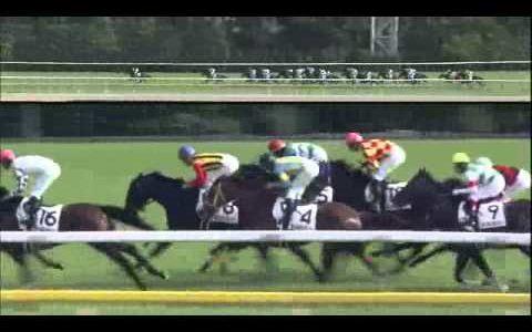 キズナの日本ダービーって勝ったから好騎乗とか言われてるけど