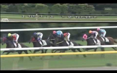 ディープインパクトのダービーに勝てる馬