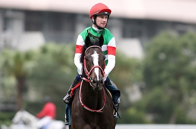 【豪G1に異変】メルボルンCに日本馬が出すぎな件【海外流出】