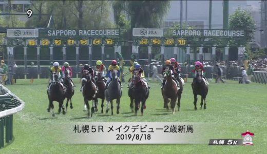 【凱旋門賞】ホウオウピースフル圧巻デビュー勝ち【有馬記念】