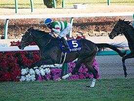サートゥルナーリア、重馬場の栗東坂路で衝撃の49秒8!