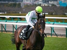キセキ、M.デムーロ騎手と久々のコンビで金鯱賞へ