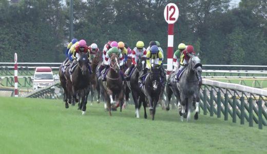 なら聞きたい、天皇賞秋のアーモンドアイを実力で負かすことできる馬って過去の馬でいるか?