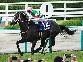 リスグラシューが有馬を勝てば年度代表馬最有力なの?