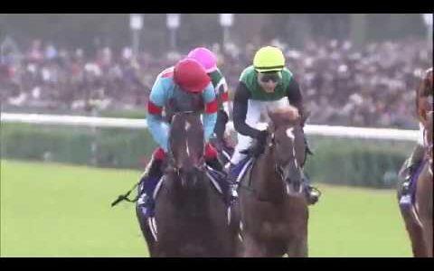 ダノンプレミアムは2着…川田将雅騎手「結果だけが得られませんでした」
