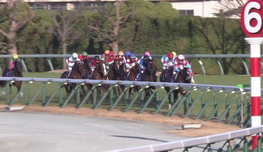 タガノビューティーは上がり最速も4着まで…和田竜二騎手「脚力は通用する。能力は高いですよ」【朝日杯FS】