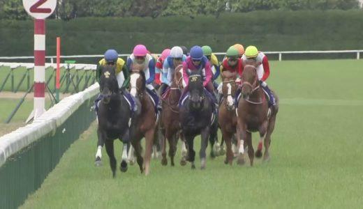 フィエールマンって日本の歴代の他の馬だとどのクラス?