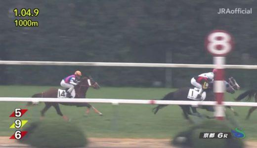 京都6R新馬戦フラッフラwwwww