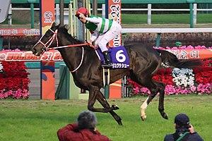 リスグラシューとかいう最高のタイミングで引退した馬
