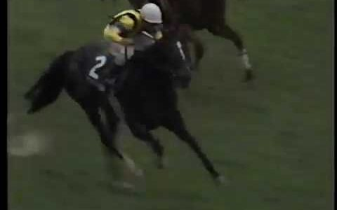 「この馬ならダービー勝てるわ」と思った青葉賞勝ち馬は?