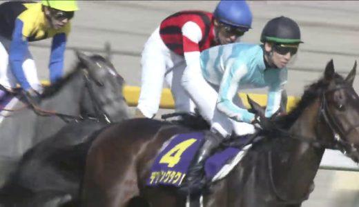 デアリングタクトは牝馬三冠獲ってもアーモンドアイみたいな不人気馬になってしまうのか?