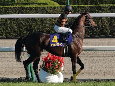 キタサンブラック、史上34頭目の顕彰馬に選出……北島三郎オーナー「大変嬉しく、心より御礼申し上げます。」