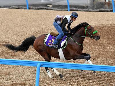 【悲報】ブラストワンピース馬体重過去最高の570kgwwywwywwywwywwywwy