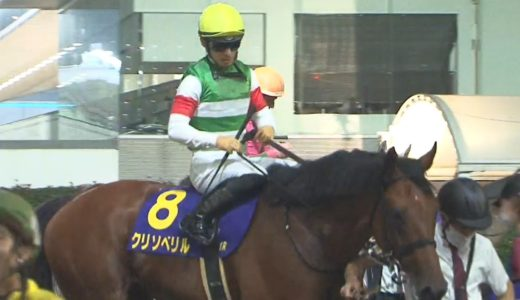 ダート日本最強馬クリソベリルの死角って何かある?