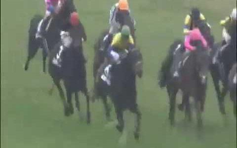 認めたくはないが、総合的に見ると日本史上最強馬はディープインパクト