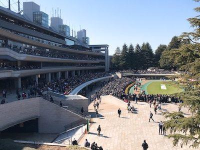 東京競馬客入れ再開!!