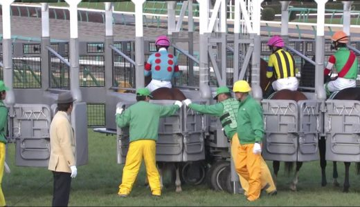 キズナ←マイラー体型なのにダービー勝利。高速馬場でキレる脚なのに重馬場のフランスG2勝利