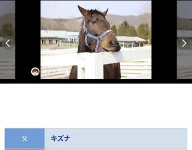 岡田総帥の悲願のイギリスダービー制覇へ向けて怪物イワズが今週デビュー