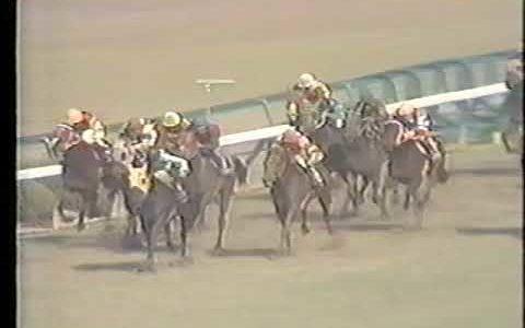 桜花賞史上、1番好きなレース