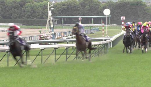 「馬は自分の走る距離を知らない」って言葉どうよ