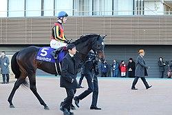 歴代でヴェルトライゼンデと同じぐらいの強さの馬