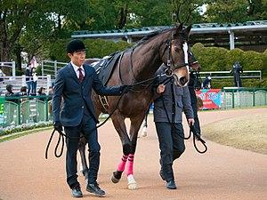 ディアドラ、凱旋門賞の鞍上はジェイミー・スペンサー騎手