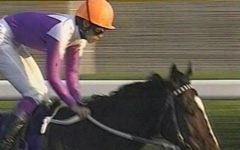 最も「ヒーロー」「ヒロイン」な競走生活を送ったと思う馬 牡牝一頭ずつ挙げてください