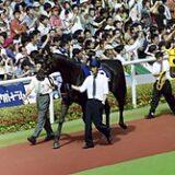 「マル外」で真っ先に思い付いた馬wwwww
