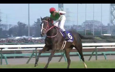 割りとガチで歴代最強の日本馬ってリスグラシューだよな