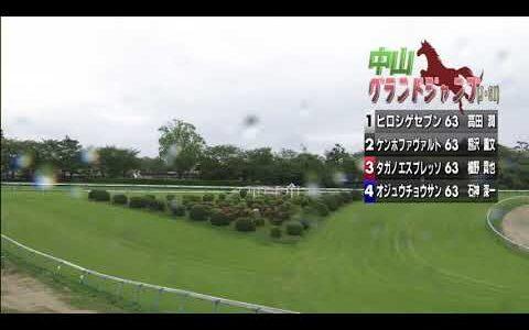 オジュウチョウサン・石神深一騎手「ハナに行くと絡まれて厳しいレース」 和田調教師「衰えとかではない」