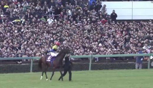 日本競馬史上最も心肺能力高い馬はディープインパクト