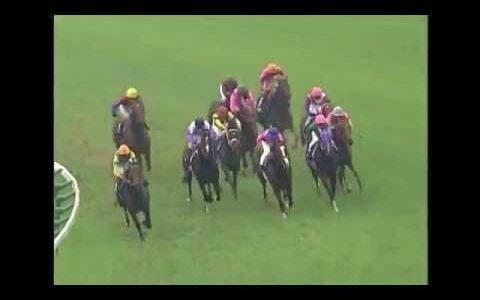 テイエムオペラオー以来どんな低レベルな年でも古馬王道路線で年間全勝した馬はいないという事実