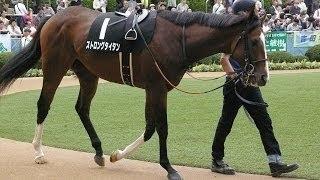 競馬知らないヤツが馬名だけ見て、コイツが一番強いと思われる馬